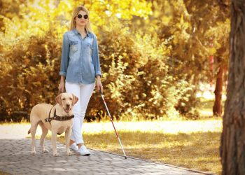young woman walking down a sidewalk with a cane, dark glasses, and a guide dog